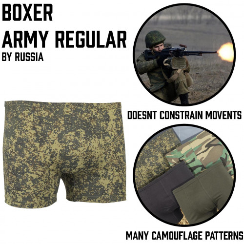 Army regular Boxer