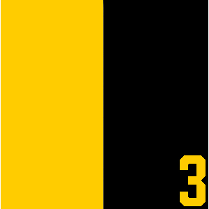 #3 Black &Yellow